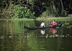 Mother Does the Rowing (The Spirit of the World) Tags: india locals motherandson reflections rowing oars boat canoe kerala backwaters southernindia dailylife tropical waterflowers foliage green waterscape