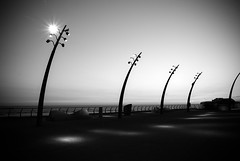 Spotlights (Mark-F) Tags: spotlights blackpool lancashire seaside coast coastal nightscape nighttime mono blacknwhite sony dslr markymarkf mark markf sonya300 freeman markfreeman promenade a300