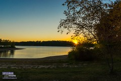 Another Lake Lanier Sunset (The Suss-Man (Mike)) Tags: animal gainesville georgia hallcounty hollypark lakelanier nature sonyslta77 sunset sussmanimaging thesussman unitedstates water lake lanier reflection tree sunburst