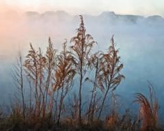 Foggy Glow (DASEye) Tags: davidadamson daseye nikon artistic glow sunrise dawn fog lake