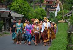 Balinese Wedding Procession (EdBob) Tags: bali balinese wedding procession traditional wear costume dress colorful celebration asia asian party walking group sarong saput march happy man woman edmundlowephotography edmundlowe southeastasia iseah allmyphotographsarecopyrightedandallrightsreservednoneofthesephotosmaybereproducedandorusedinanyformofpublicationprintortheinternetwithoutmywrittenpermission people village wed villagers