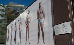Camel Toe (Ralph Green) Tags: adelabdin cameltoe norway oslo oslocentralstation gender photograph sexualityandgender sexulaity streetart