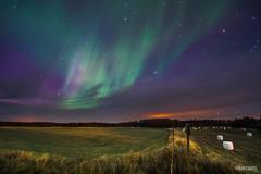Aurora over Lovanger (3) - Lovanger, Sweden.jpg (SWTRIPS) Tags: scandinavia aurora sweden night photography long exposure roadtrip lovanger swtrips longexposure nightphotography