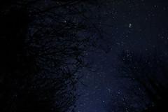 Des toiles plein la tte (o.penet) Tags: nuits nights skies ciels voielacte milkyway stars etoiles nature