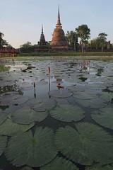 Wat Sa-Si (fredMin) Tags: wat sasi sukhothai thailand city ancient travel fujifilm xt1