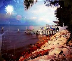 https://foursquare.com/v/tanjung-sepat--%E6%83%85%E4%BA%BA%E6%A9%8B/4c01cbb9f99620a15e322504 #holiday #travel #trip #beach #water #Asia #Malaysia #selangor #tanjungsepat # # # # # # # # (soonlung81) Tags: holiday travel trip beach water asia malaysia selangor tanjungsepat
