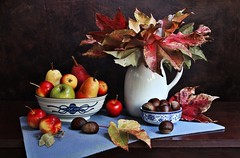 Autumn Rounds Out (Esther Spektor - Thanks for 12+millions views..) Tags: stilllife naturemorte bodegon naturezamorta stilleben naturamorta composition art creativephotography artisticphoto tabletop arrangement autumn food fruit pear apple chestnut bowl potcher placemat leaf pattern ceramics linen stem availablelight green red blue yellow orange rust maroon brown estherspektor canon crimson