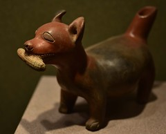 Ancient corn dog! (orientalizing) Tags: 200600ad americas antiquities archaeologicalmuseum archaia centralmexico ceramic chihuahua colima corncob dog mexico mexicocity nationalmuseumofanthropology northernmexico pots pottery precolumbian tumbasdetiro vessels