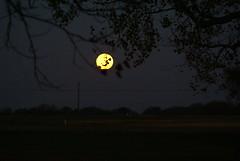 DSC00450 (carrie_20001jf) Tags: supermoon moon morning night astronomy texas sky texassky supermoon2016 2016 skyporn nature texasnature