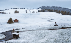 Italy. Dolomites. Snowy morning on the plateau of Alpe di Siusi (naumenkophotographer.com.ua) Tags: alpe alpine alps autumn background beautiful beauty di dolomites dolomiti europe green highest hiking italy landscape larch meadow mountain natural nature ortisei outdoor pasture path peak rock sassolungo scenery scenic seuc siusi sky travel tyrol view pentax