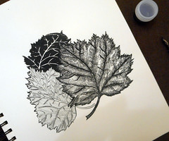 06.10 (ria_arei) Tags: inkbober inktober2016 ink inkart october challenge
