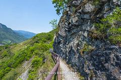 Harry_31861,,,,,,,,,,,, (HarryTaiwan) Tags:               yushannationalpark nationalpark nantou nantoucounty     harryhuang   taiwan nikon d800 hgf78354ms35hinetnet adobergb
