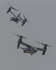 "Bell Boeing CV-22B Ospreys of the 20 SOS ""Green Hornets"" from Cannon AFB (Norman Graf) Tags: green hornets 080038 100056 20sos 2016cannonafbopenhouseandairshow 20thspecialoperationssquadron 27sow 27thspecialoperationswing afsoc airforcespecialoperationscommand airshow aircraft bellboeing cv22 cv22b cannonafb osprey rotarywingaircraft rotorcraft stol shorttakeoffandlanding tiltrotor usaf unitedstatesairforce v22 vtol verticaltakeoffandlanding greenhornets"