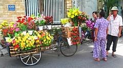 Plastic flower seller (The Sloths) Tags: bikes bikesellers flowerseller flowers danang vietnam asia southeastasia