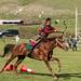 Arco e flecha do cavalo