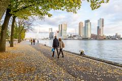 Romantic Rotterdam (apersyannick) Tags: rotterdam skyline autumn couple romance romantic wide angel netherlands maas