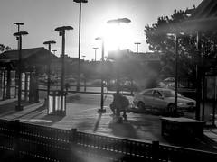 20161015-P1120475-2 (STC4blues) Tags: jerseycity wardf libertystatepark