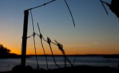 Fence (Marius K. Eriksen) Tags: golden hour norge norway sunset coast nature natureporn natur solnedgang bokeh stfold rsneskilen