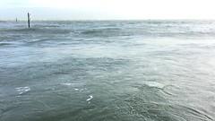 The Pig on the Beach (HerryLawford) Tags: studland sea wave video sandbanks