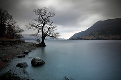 Something from Nothing (stejay2720) Tags: ngc lakedistrict thelakes cumbria uk england northwestengland nationalpark nationaltrust britain ullswater landscape scenery atmospheric moody clouds tree lake canon tokina leefilters longexposure stephenjackson srj amateur