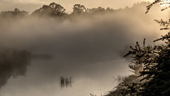 Wingecarribee River in mist (alden0249) Tags: australianlandscape dawn landscape mist nature sunrise watercourse