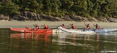 DSC_3428_2 (alicemourasilva) Tags: canoa waka outrigger outriggercanoe vaka waa vaa canoahavaiana wakaama canoapolinsia cbca