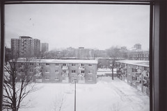 B&W 2010 (S. Giroux) Tags: winter white film angel analog 35mm photography lomography slim montréal uqam