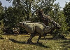 si salvi chi pu!!! (stefano bertelli) Tags: jurassic dinosauri carnivoro terrore parconaturaviva predatore