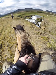 Everyone that do visit Iceland, should go on a horsebackriding trip. Well worth it!