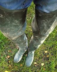 Muddy green waders (Lisban2009) Tags: wellies waders rubberboots gummistiefel muddywellies