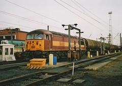 "English Welsh & Scottish Railways Class 56, 56032 (37190 ""Dalzell"") Tags: grid leeds brush depot revised ews class56 56032 maroongold nevillehill type5 englishwelshscottishrailways doncasterbuilt"