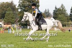 163L_0079 (Lukas Krajicek) Tags: military czechrepublic cz kon koně vysočina vysoina southbohemianregion blažejov dvoreček všestrannost dvoreek