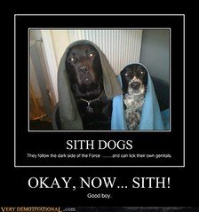 OKAY, NOW... SITH! (Chikkenburger) Tags: posters memes demotivational cheezburger workharder memebase verydemotivational notsmarter chikkenburger