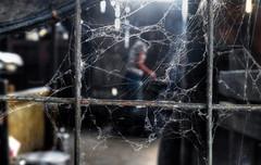 Trapped (Saint-Exupery) Tags: leica burma myanmar birmania