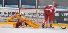 Junghaie vs. Düsseldorfer EG, 01.11.2015