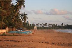 AJY_3062 (arika.otomamay) Tags: beach sri lanka srilanka trincomalee