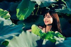 Huyen Anh (Le Minh Tuan) Tags: sunset nature beautiful garden vietnamese lotus outdoor naturallight vietnam beautifulwoman hanoi prettygirl goldenhour sen asiangirl beautifullady lotusflower lotuspond asianmodel vietnamesegirl hoasen msen chupsen
