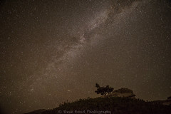 oh milky light up my night_8100360 (steve bond Photog) Tags: milkyway milkway nikon stevebond yosemitenationalpark yosemite