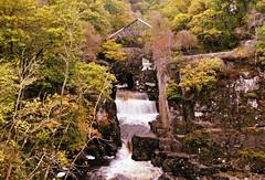 Bracklinn Falls, Callander (Pauline Deas) Tags: callander trossachs walks rambles scotland scottish waterfalls bracklinn falls water outdoors landscape trees