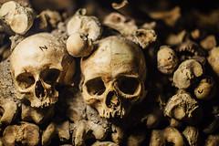 Le Morte (Xvant) Tags: catacumbas catacombs skulls dead muerte morte calaveras huesos osamentas bones femur detail people old story cementery cementerio tumbas pedrorojasjorquera france paris 6d 50mm 50mmf12l documentary documental