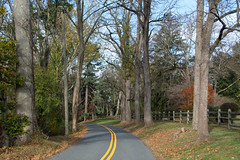 A pleasant weekend for bicycling in the Sourlands of New Jersey (GlennCantor (theskepticaloptimist)) Tags: bicycling bicycle seenwhilecycling newjersey mercercounty fall autumn hopewelltownship sourlands road