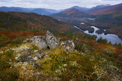 Lesser seen Affric (Donald Beaton) Tags: uk scotland highlands glen affric loch forest wood tree trees landscape carn fiaclach munros hill sony a7 autumn scene scenery view viewpoint