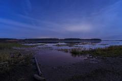Aurora failure (Len Langevin) Tags: night sky lake water longexposure alberta landscape nikon d300s tokina 1116