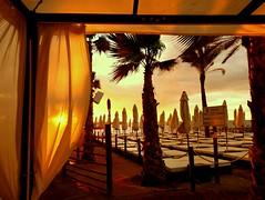 El sol detrs de la cortina (camus agp) Tags: playas marbella espaa amanecer parasoles palmeras