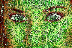 out of jungle (joei.laut) Tags: joeilaut oktober 2016 digitalart collage green girl eyes jungle