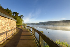 Thornton Mist (John__Hull) Tags: thornton reservoir mist sunrise early morning boardwalk woods trees reflections leicerstershire uk england countryside nikon d3200 sigma 1020mm