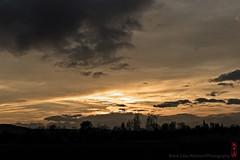 sunset (alamond) Tags: quiet evening sky clouds sun sunset shadow silhouette dark gold golden canon 7d markii mkii llens ef 1740 f4 l usm alamond brane zalar