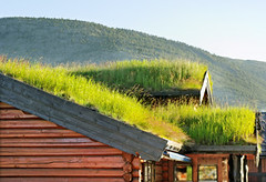 Roofs with grass. (arletterobertson) Tags: architecture blue building cloud cottage europe fog grass green hills home horizontal house landscape morning mountain nature nobody nordic north norway outdoor panorama peak rural scandinavia sky small summer tourism traditional tranquil travel tree view village weather wood roof store cafe