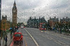 Red bus, rainy day (laraforestan) Tags: london westminsterbridge rainyday november