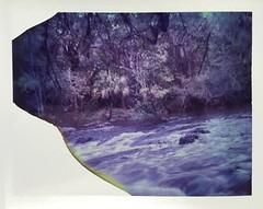 River Rapids (dreamscapesxx) Tags: instant polaroid peelapart supershooter polaroid689film expiredfilm riverrapids bytheriver rushingby beautifulplace hillsboroughriverstatepark seffnerfl snapitseeit